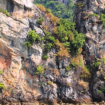 Ha Long Bay Limestone Cliff Pattern by gigges