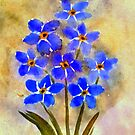 Forget Me Not by Charisse Colbert