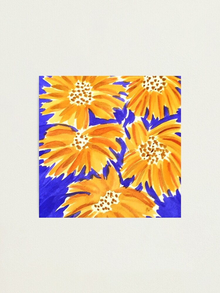 Alternate view of Yellow on Blue  Photographic Print