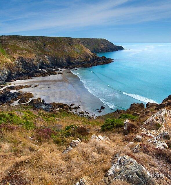Downas Cove Lizard Penninsula Cornwall by eddiej