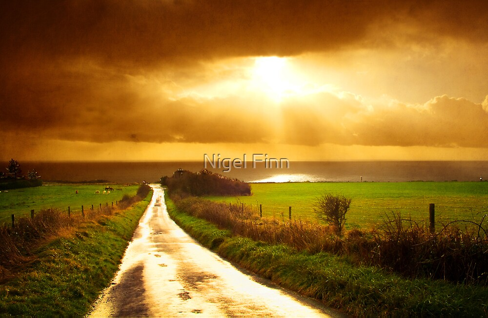 A Road To Nowhere by Nigel Finn