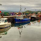 Tobermory Harbour, Mull by Jamie  Green