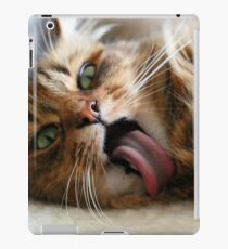 Goofy Cat iPad Case/Skin
