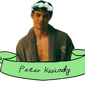 Peter Kavinsky sticker by alex44695