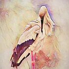 Pinked Heron by TheresaC1953