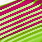 Diagonal Reflection - Watermelon by Shawna Rowe