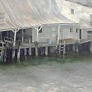 Tarpon Springs Fish Dock by Dan Budde