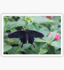 Pink Rose butterfly Sticker