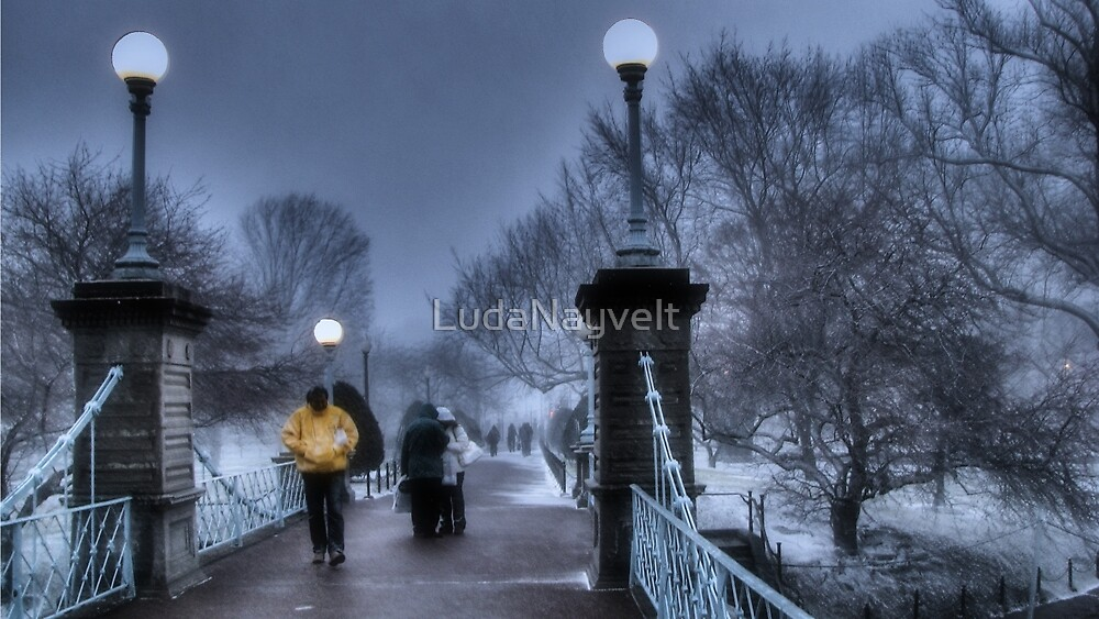 Winter in Boston by LudaNayvelt