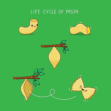 Life cycle of pasta by AndresColmenare