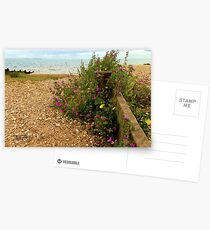 Whitstable Beach Postcards