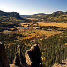 Autumn from Wolf Creek Pass by John  Sperry