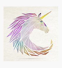 unicorn cercle Photographic Print