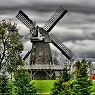 Working Windmill, Manitoba by Vickie Emms