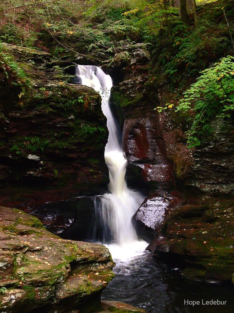Adams Falls at Ricketts Glen by Hope Ledebur