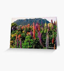 photoj Tas Mt Roland Greeting Card