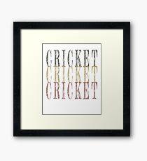 Retro Cricket design Framed Print