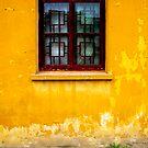 China Mustard  by eyesoftheeast
