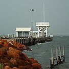 Albany Jetty by Eve Parry