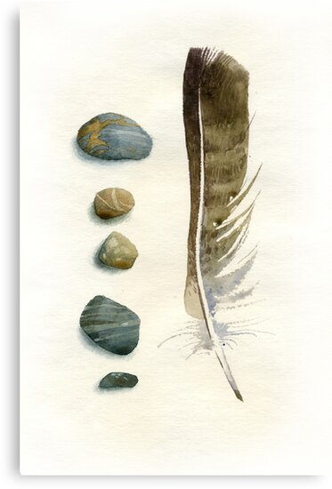 Stones and feather by Sergei Kurbatov