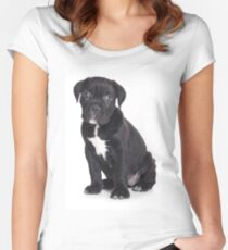 Black Cane Corso puppy Women's Fitted Scoop T-Shirt