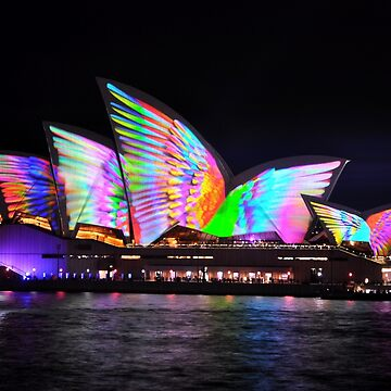 Vivid Festival 2018- Wings On Opera House Sails by muz2142