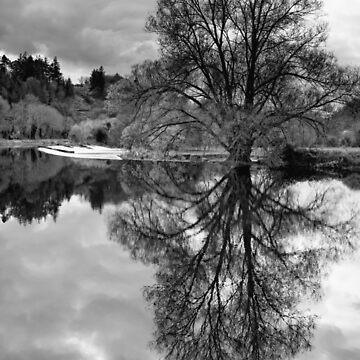 Clashganny weir, River Barrow, County Carlow, Ireland by AndyJones
