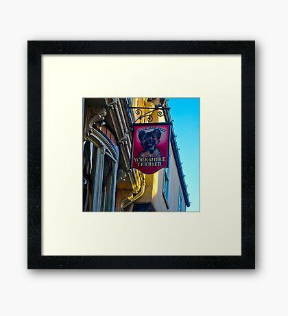 The Yorkshire Terrier  (Pub Sign) Framed Print