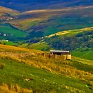 The Beauty of the Dales by Trevor Kersley
