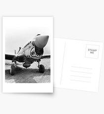 Flying Tigers P-40 Warhawk, 1941. Vintage Photo Postcards