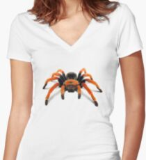 Mexican Beauty Tarantula Spider  Women's Fitted V-Neck T-Shirt