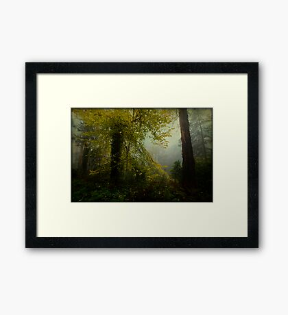 I Can Breathe Framed Print