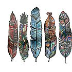 5 colorful feathers in Tbilisi - white background by Masaharu Hayataki