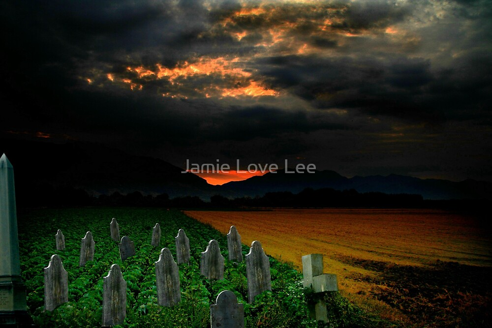 The Final Chapter by Jamie Lee