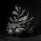Still life autumn by Anki Hoglund