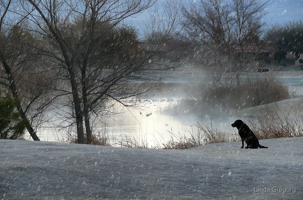On A Cold Winter Morning by Linda Gregory