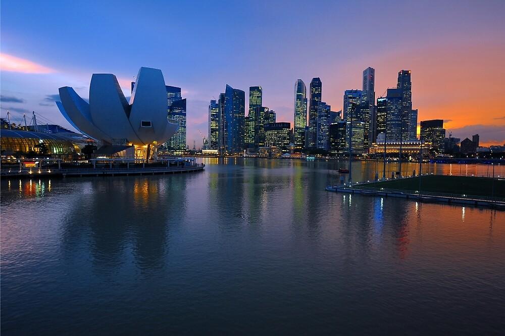 Marina Bay, Singapore. by Ralph de Zilva