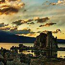 Evening on Mono Lake by Barbara  Brown