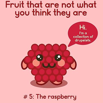 Fruit That Are Not What You Think They Are: The Raspberry by venturevictrix
