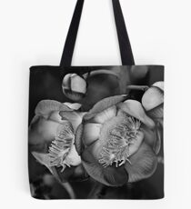 Cannonball Tree Tote Bag