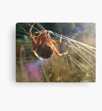 Good Morning Harry Canvas Print