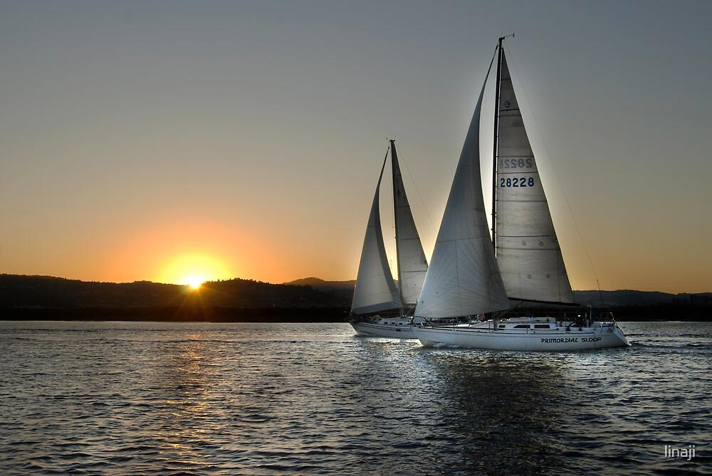Sailing Into The Sunset by linaji