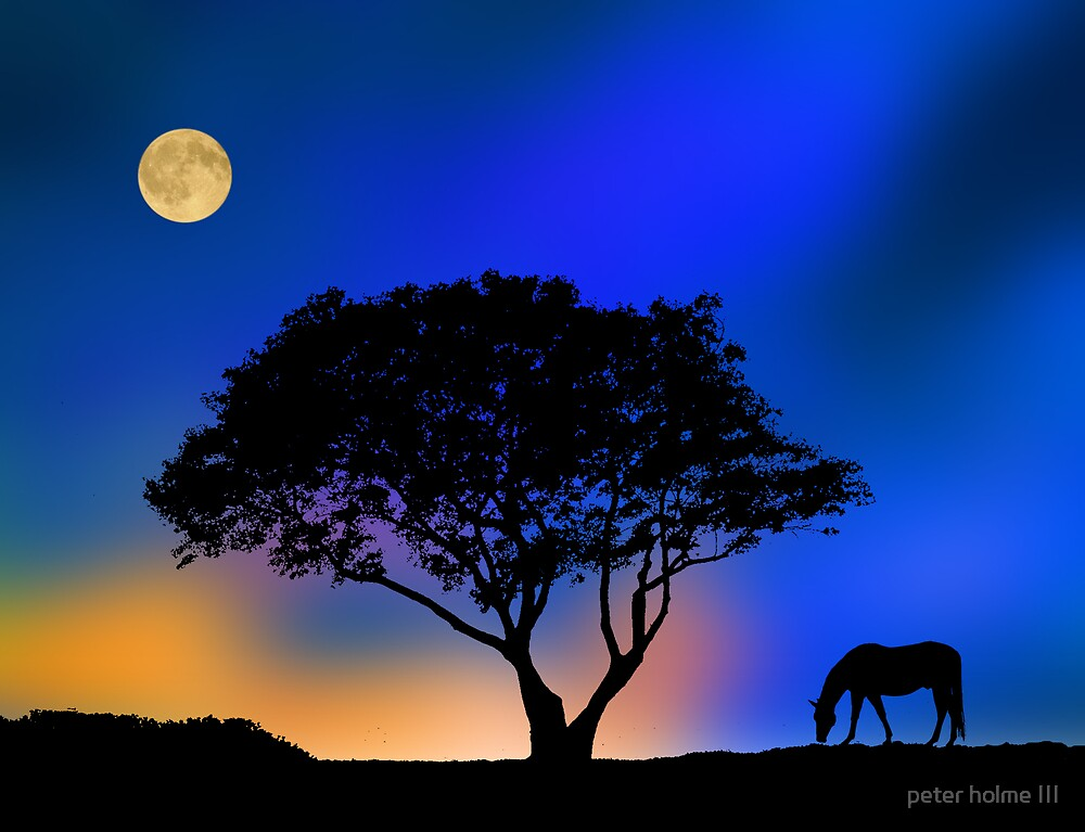 10 by peter holme III