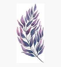 watercolor branch Photographic Print