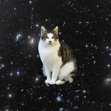 Space Cat by JStuartArt