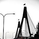 Anzac Bridge afternoon by scottsphotos