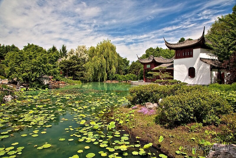 Chinese Gardens by Photos by Healy