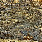 Lava Land by Morris Klein