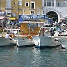 Boats to The Blue Groto  by longaray2