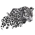 Cosmic Leopard by ECMazur